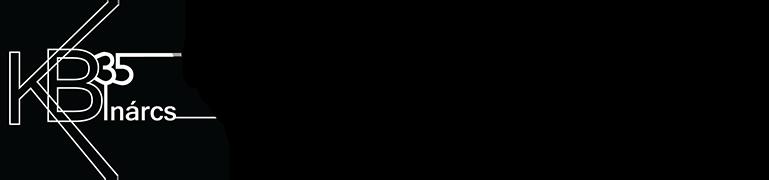 Kb35 Inárcsi Színjátszó Közhasznú Egyesület - Adattár